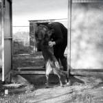 Dog Kennels in Blackshaw Moor